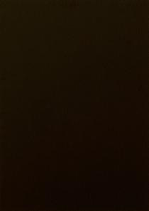 Schwarzbraun 8518